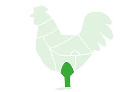 Pilon-Poulet-surgele-jem-food-trading-2