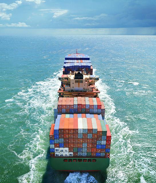 export-import-jem-food-trading